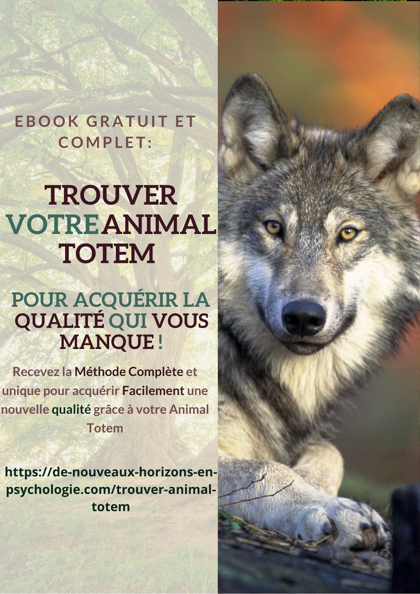 Trouver son animal totem